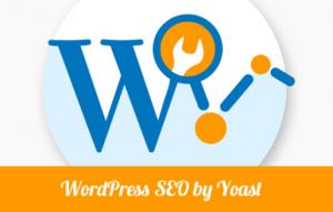 wordpress-SEO-by-yoast-plugin-494x315