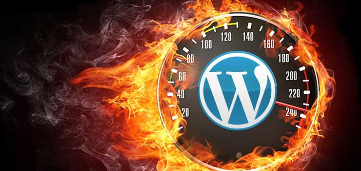 aumentar-velocidad-wordpress-jpg-pagespeed-ce-9ymjyzeec9
