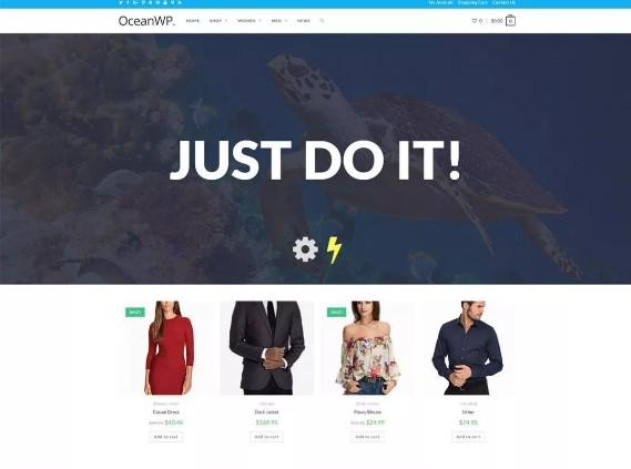 theme oceanwp